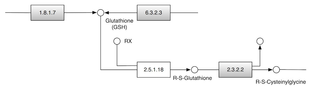 https://static-content.springer.com/image/art%3A10.1186%2F1471-2105-11-417/MediaObjects/12859_2010_Article_3874_Fig5_HTML.jpg