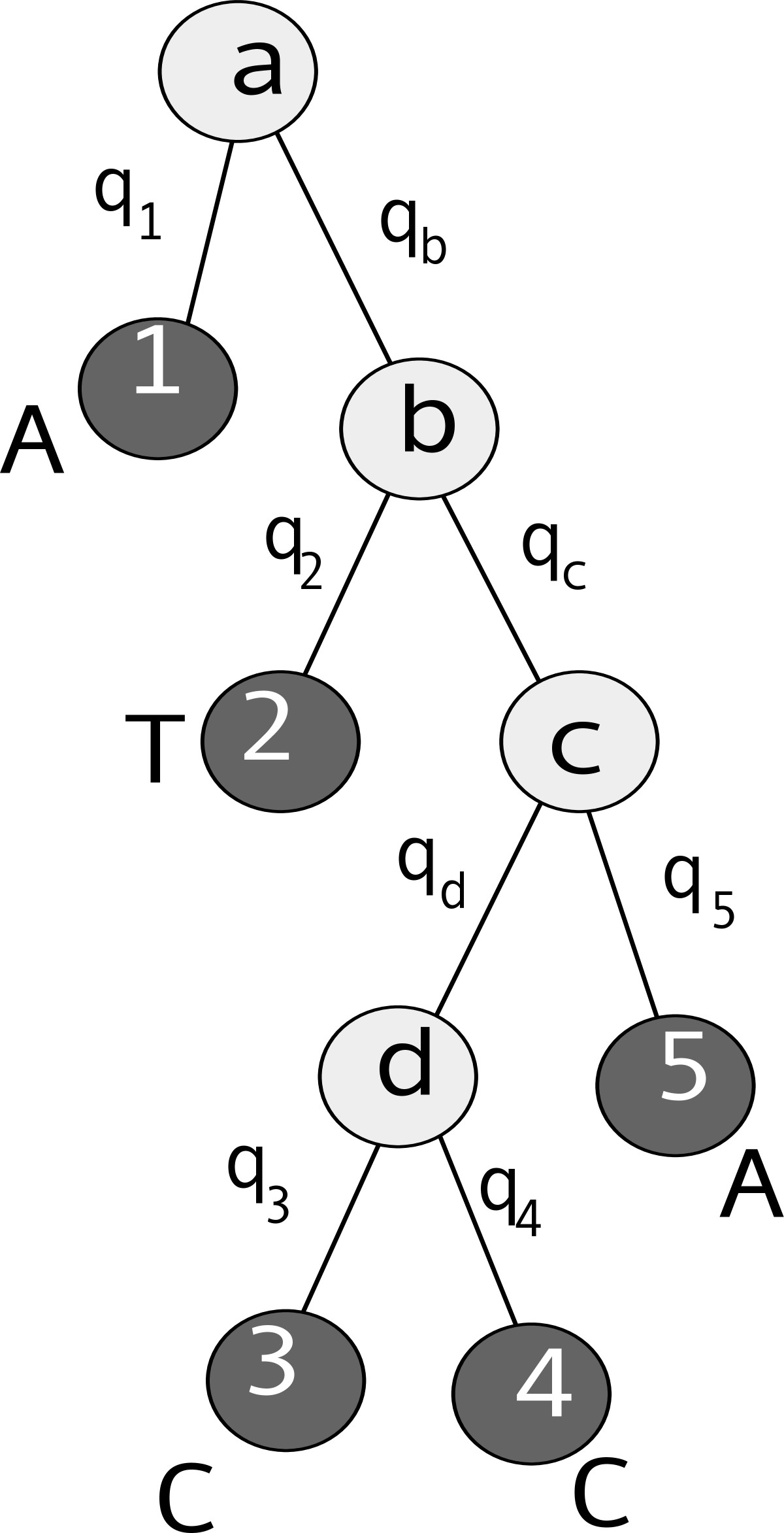https://static-content.springer.com/image/art%3A10.1186%2F1471-2105-11-464/MediaObjects/12859_2010_Article_3921_Fig5_HTML.jpg