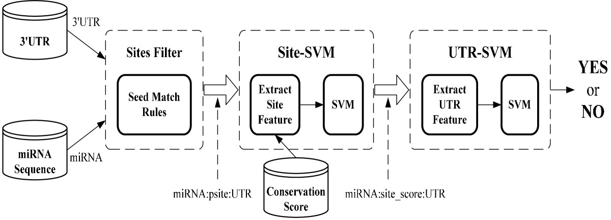 https://static-content.springer.com/image/art%3A10.1186%2F1471-2105-11-476/MediaObjects/12859_2010_Article_3933_Fig1_HTML.jpg