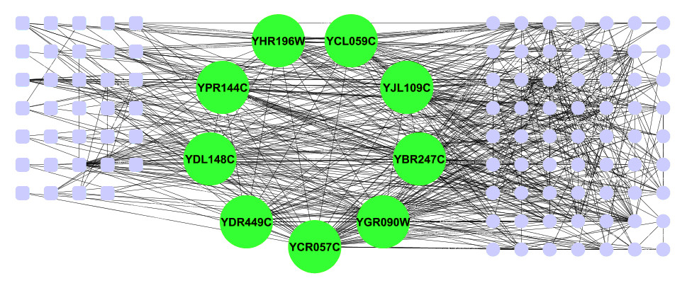 https://static-content.springer.com/image/art%3A10.1186%2F1471-2105-11-505/MediaObjects/12859_2010_Article_4088_Fig4_HTML.jpg