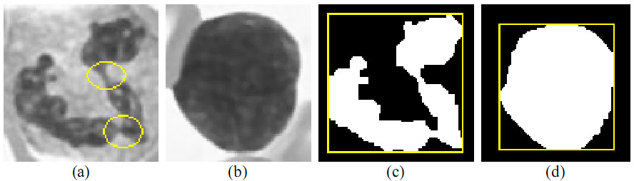 https://static-content.springer.com/image/art%3A10.1186%2F1471-2105-11-558/MediaObjects/12859_2009_Article_4141_Fig20_HTML.jpg