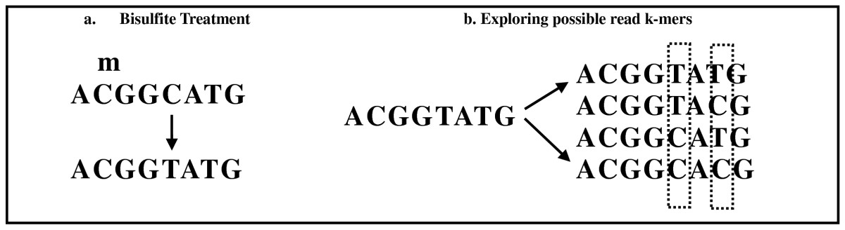 https://static-content.springer.com/image/art%3A10.1186%2F1471-2105-11-572/MediaObjects/12859_2010_Article_4155_Fig2_HTML.jpg