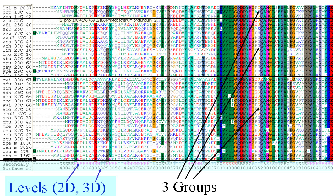 https://static-content.springer.com/image/art%3A10.1186%2F1471-2105-11-573/MediaObjects/12859_2010_Article_4156_Fig2_HTML.jpg