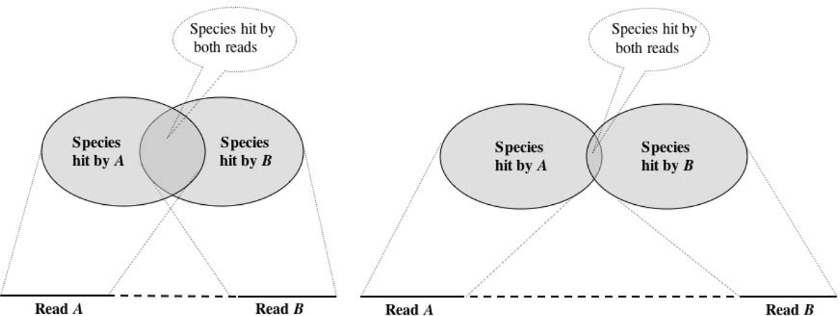 https://static-content.springer.com/image/art%3A10.1186%2F1471-2105-11-S1-S12/MediaObjects/12859_2010_Article_3962_Fig1_HTML.jpg
