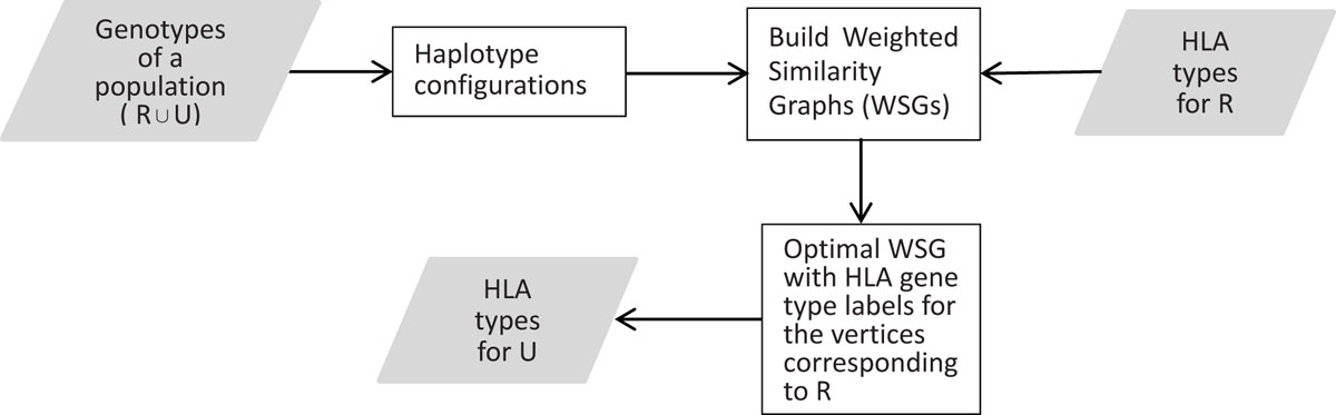 https://static-content.springer.com/image/art%3A10.1186%2F1471-2105-11-S11-S10/MediaObjects/12859_2010_Article_4298_Fig3_HTML.jpg
