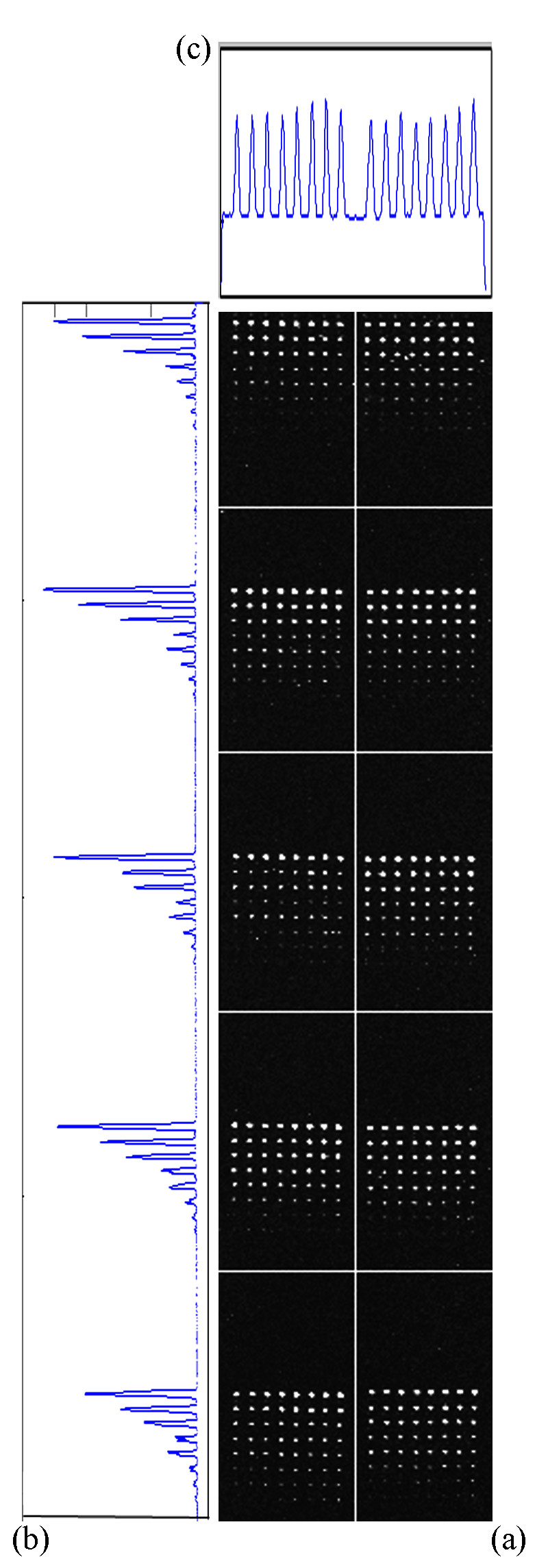 https://static-content.springer.com/image/art%3A10.1186%2F1471-2105-12-113/MediaObjects/12859_2010_Article_4507_Fig10_HTML.jpg