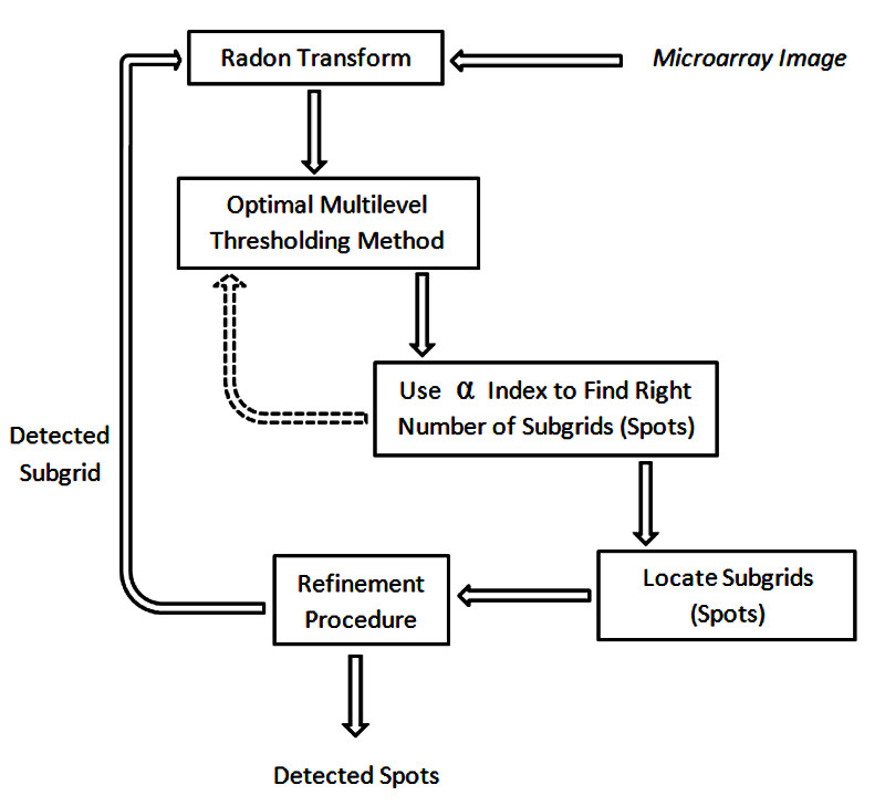 https://static-content.springer.com/image/art%3A10.1186%2F1471-2105-12-113/MediaObjects/12859_2010_Article_4507_Fig11_HTML.jpg
