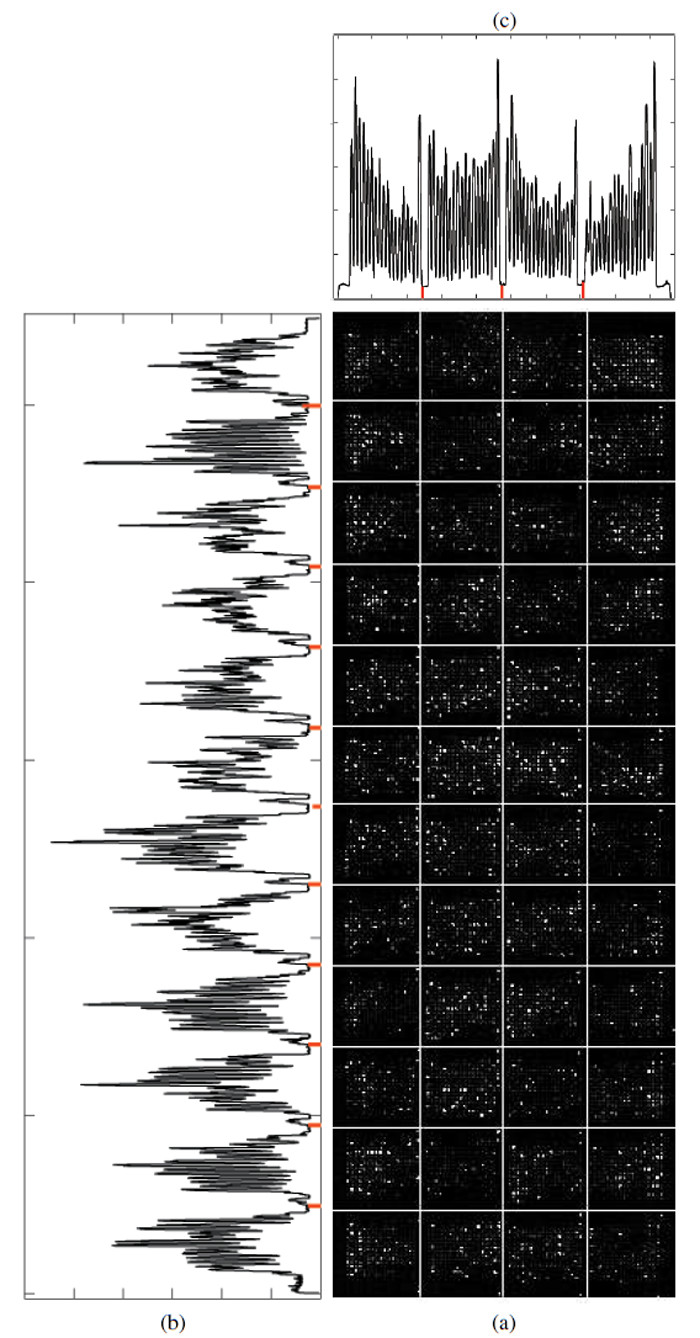 https://static-content.springer.com/image/art%3A10.1186%2F1471-2105-12-113/MediaObjects/12859_2010_Article_4507_Fig12_HTML.jpg