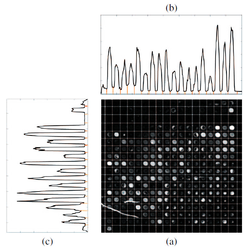https://static-content.springer.com/image/art%3A10.1186%2F1471-2105-12-113/MediaObjects/12859_2010_Article_4507_Fig13_HTML.jpg