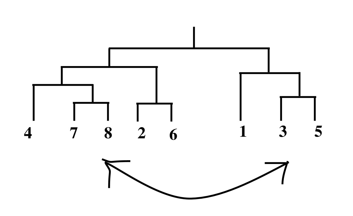 https://static-content.springer.com/image/art%3A10.1186%2F1471-2105-12-353/MediaObjects/12859_2011_Article_4782_Fig4_HTML.jpg