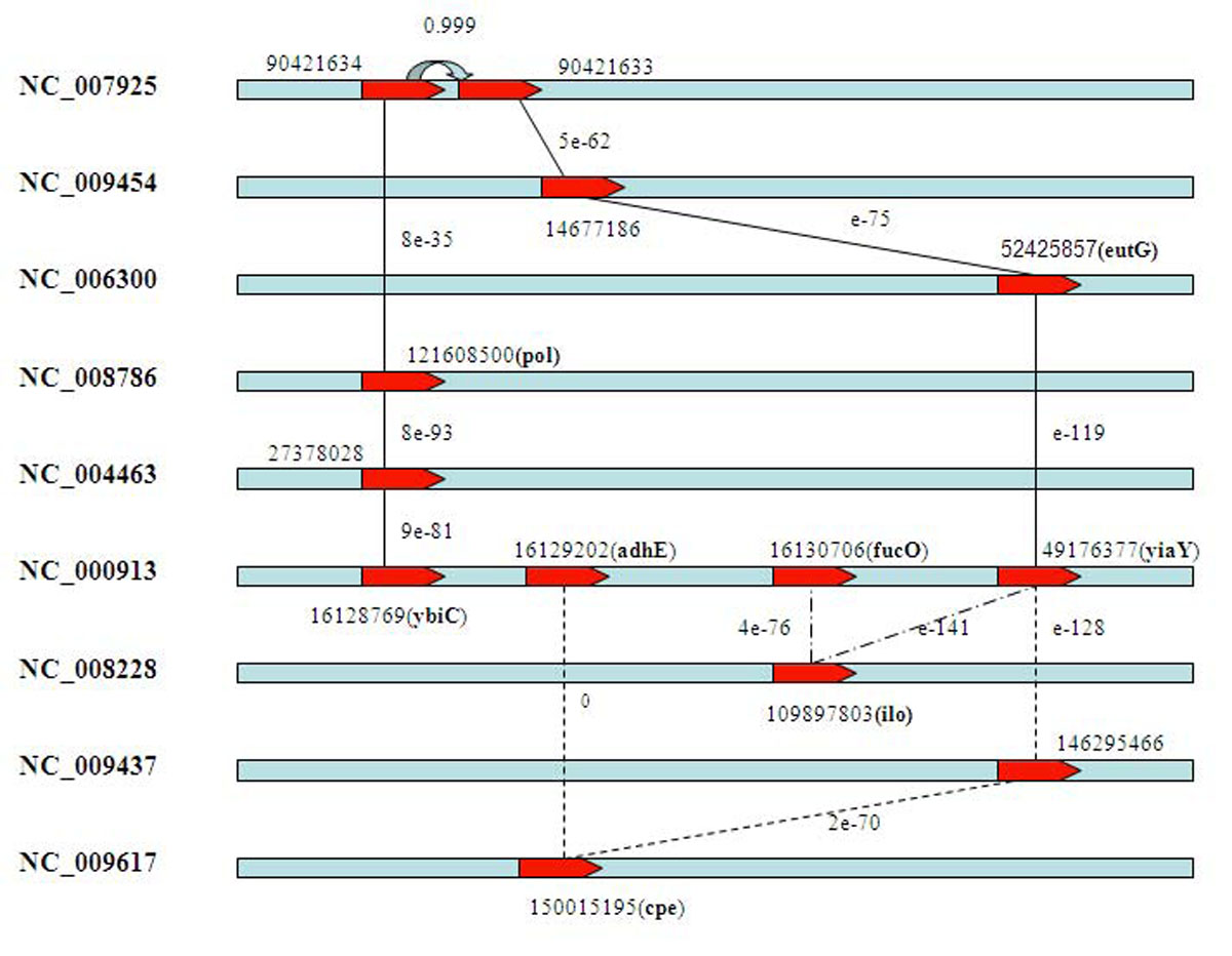 https://static-content.springer.com/image/art%3A10.1186%2F1471-2105-12-S1-S1/MediaObjects/12859_2011_Article_4359_Fig4_HTML.jpg