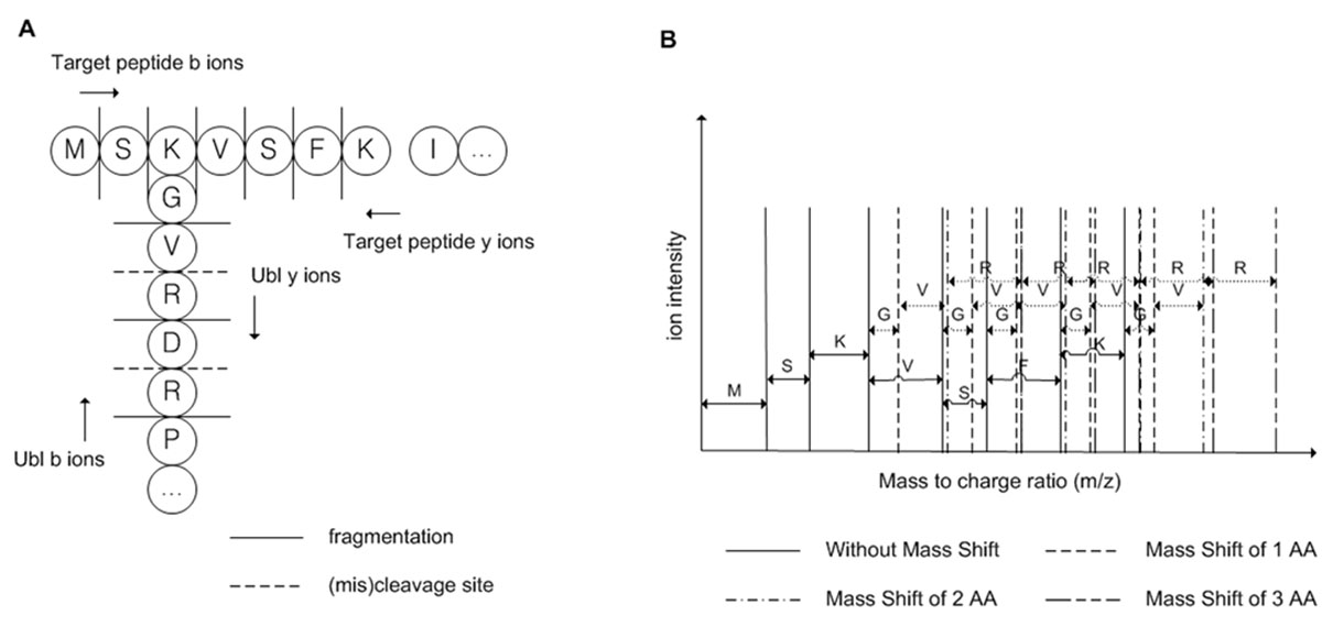 https://static-content.springer.com/image/art%3A10.1186%2F1471-2105-12-S14-S8/MediaObjects/12859_2011_Article_4967_Fig1_HTML.jpg