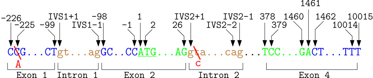 https://static-content.springer.com/image/art%3A10.1186%2F1471-2105-12-S4-S4/MediaObjects/12859_2011_Article_4614_Fig5_HTML.jpg