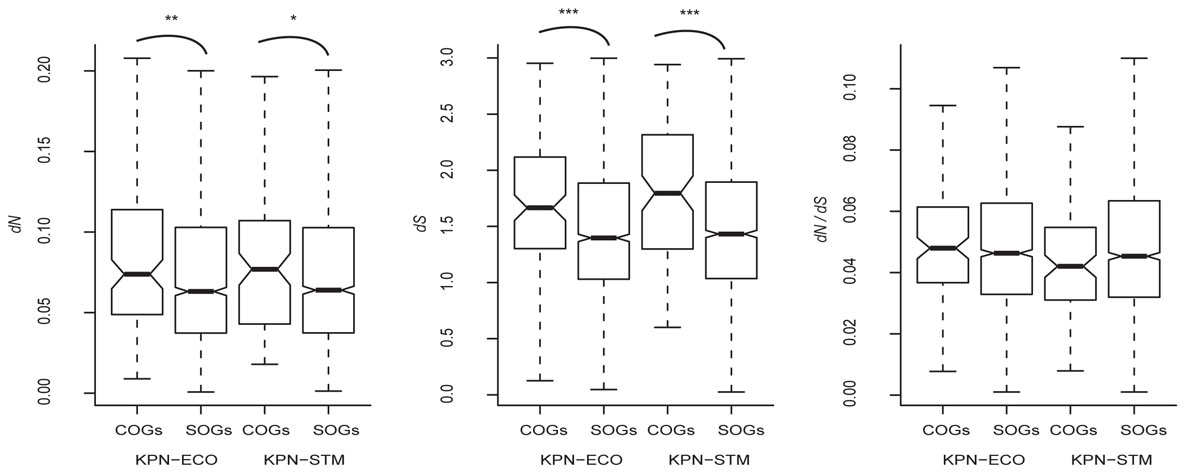 https://static-content.springer.com/image/art%3A10.1186%2F1471-2105-12-S9-S19/MediaObjects/12859_2011_Article_4826_Fig1_HTML.jpg