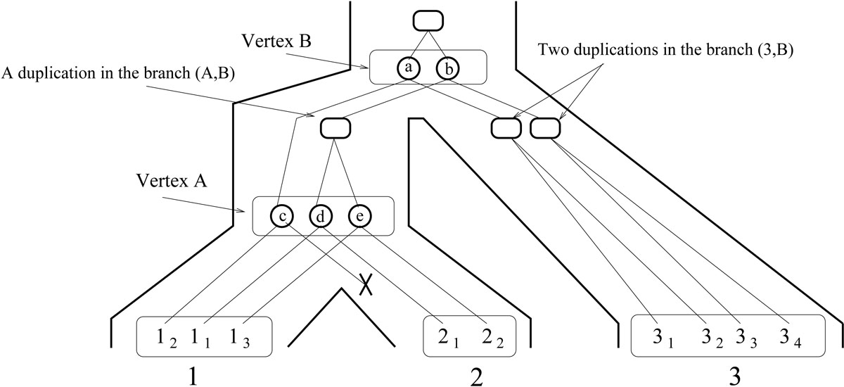 https://static-content.springer.com/image/art%3A10.1186%2F1471-2105-12-S9-S2/MediaObjects/12859_2011_Article_4809_Fig3_HTML.jpg