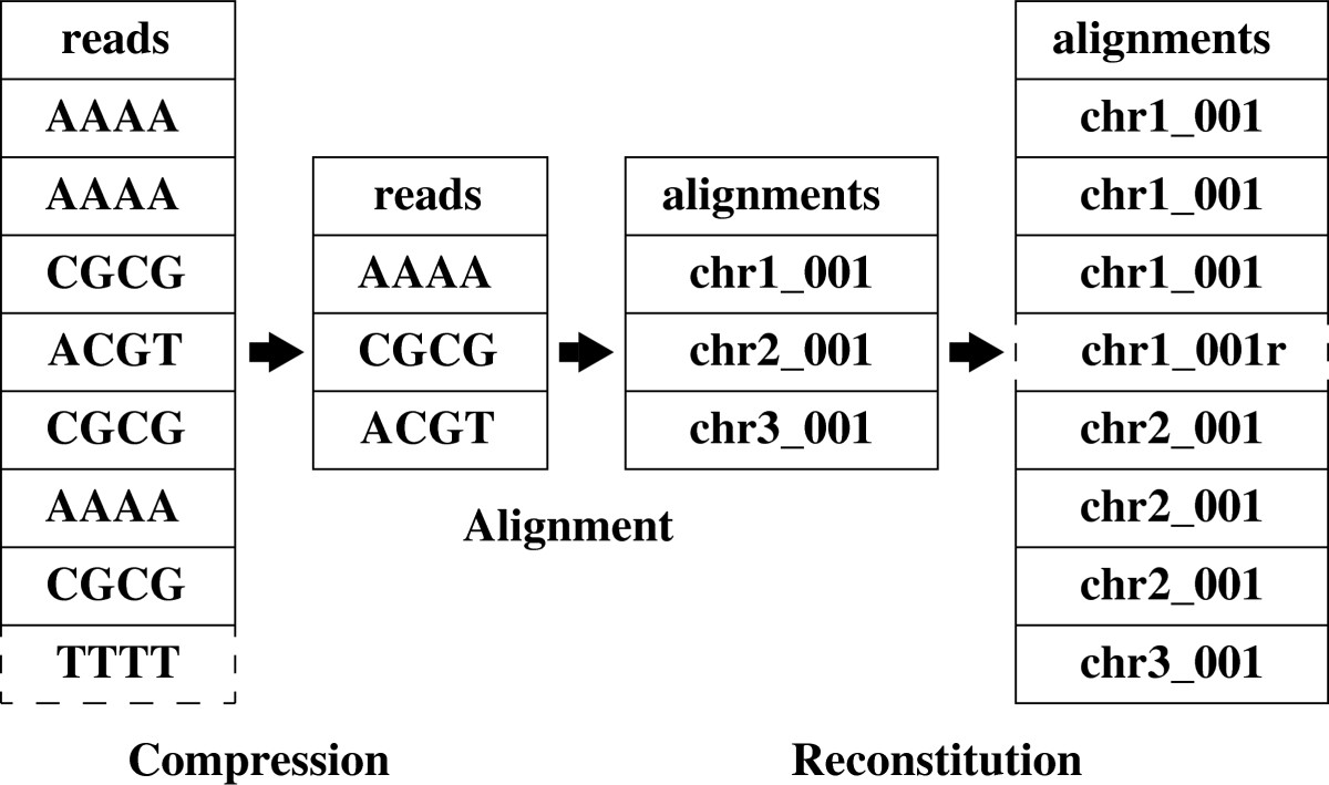 https://static-content.springer.com/image/art%3A10.1186%2F1471-2105-13-297/MediaObjects/12859_2012_Article_5548_Fig3_HTML.jpg