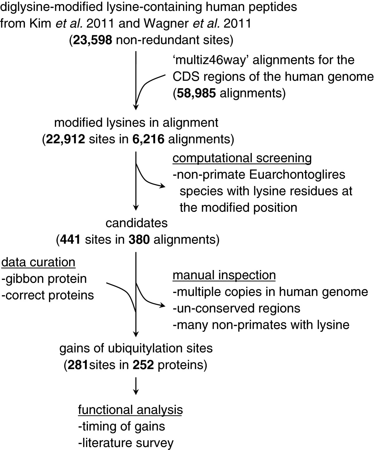 https://static-content.springer.com/image/art%3A10.1186%2F1471-2105-13-306/MediaObjects/12859_2012_Article_5633_Fig1_HTML.jpg