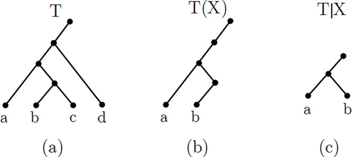 https://static-content.springer.com/image/art%3A10.1186%2F1471-2105-13-S10-S12/MediaObjects/12859_2012_Article_5217_Fig1_HTML.jpg