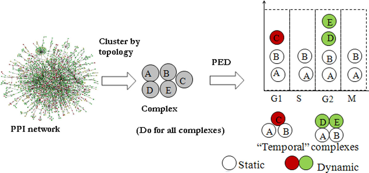https://static-content.springer.com/image/art%3A10.1186%2F1471-2105-13-S17-S16/MediaObjects/12859_2012_Article_5480_Fig2_HTML.jpg