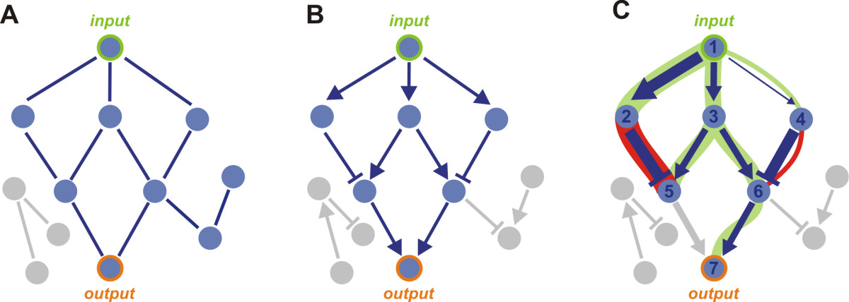 https://static-content.springer.com/image/art%3A10.1186%2F1471-2105-14-137/MediaObjects/12859_2012_Article_5900_Fig1_HTML.jpg