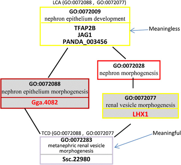 https://static-content.springer.com/image/art%3A10.1186%2F1471-2105-14-251/MediaObjects/12859_2013_Article_6051_Fig7_HTML.jpg
