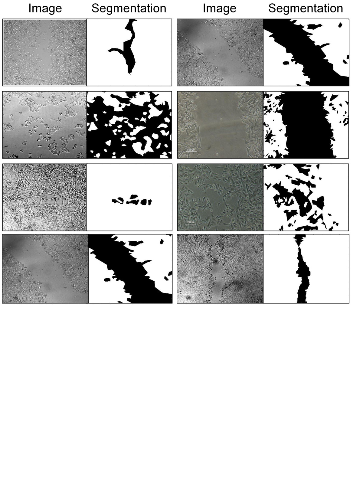 https://static-content.springer.com/image/art%3A10.1186%2F1471-2105-14-319/MediaObjects/12859_2013_Article_6193_Fig1_HTML.jpg