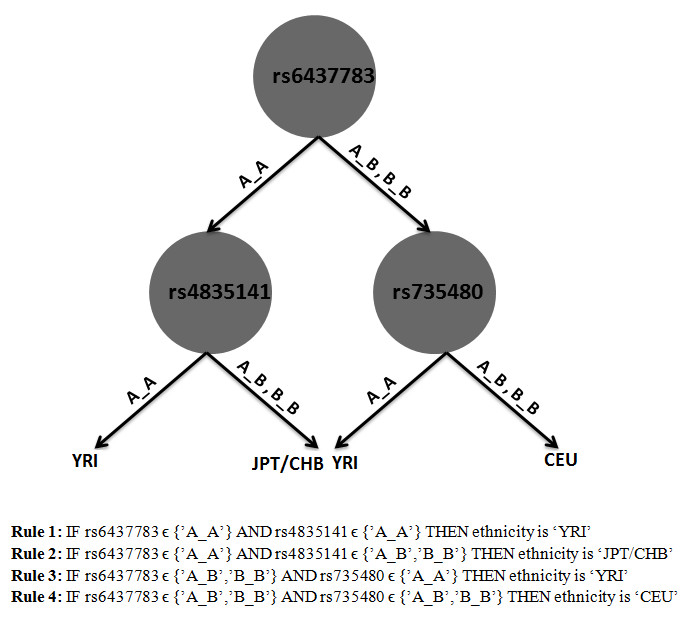 https://static-content.springer.com/image/art%3A10.1186%2F1471-2105-14-61/MediaObjects/12859_2013_Article_5763_Fig2_HTML.jpg