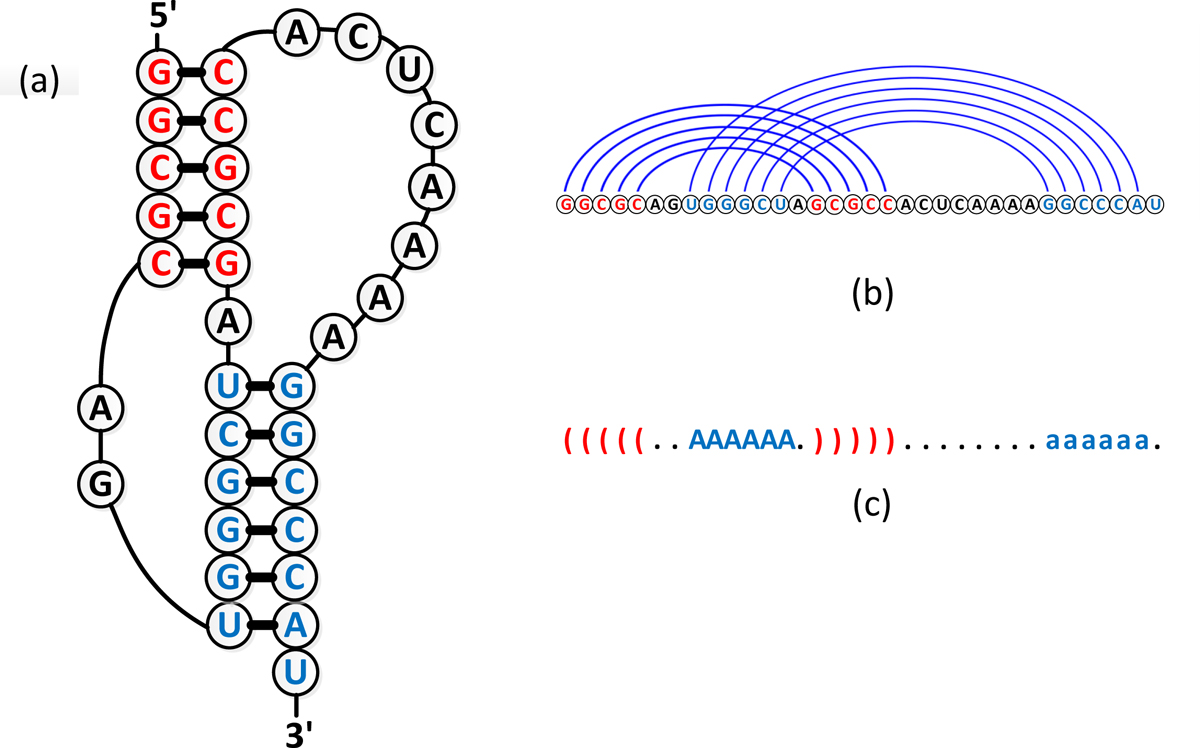 https://static-content.springer.com/image/art%3A10.1186%2F1471-2105-14-S2-S1/MediaObjects/12859_2013_Article_5590_Fig1_HTML.jpg