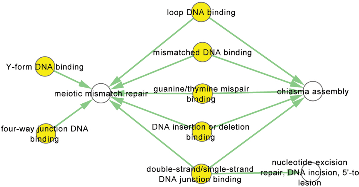 https://static-content.springer.com/image/art%3A10.1186%2F1471-2105-14-S2-S15/MediaObjects/12859_2013_Article_5604_Fig5_HTML.jpg