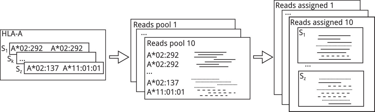 https://static-content.springer.com/image/art%3A10.1186%2F1471-2105-15-296/MediaObjects/12859_2014_Article_6558_Fig2_HTML.jpg