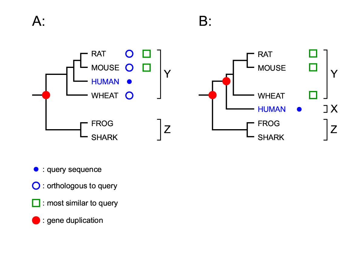 https://static-content.springer.com/image/art%3A10.1186%2F1471-2105-3-14/MediaObjects/12859_2002_Article_24_Fig1_HTML.jpg