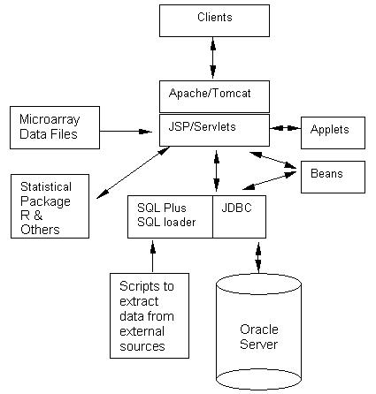 https://static-content.springer.com/image/art%3A10.1186%2F1471-2105-4-56/MediaObjects/12859_2003_Article_106_Fig1_HTML.jpg