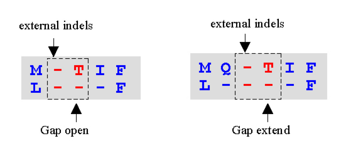 https://static-content.springer.com/image/art%3A10.1186%2F1471-2105-5-113/MediaObjects/12859_2004_Article_229_Fig12_HTML.jpg