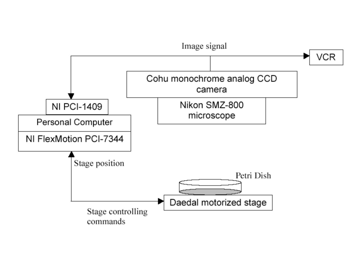 https://static-content.springer.com/image/art%3A10.1186%2F1471-2105-5-115/MediaObjects/12859_2004_Article_231_Fig1_HTML.jpg