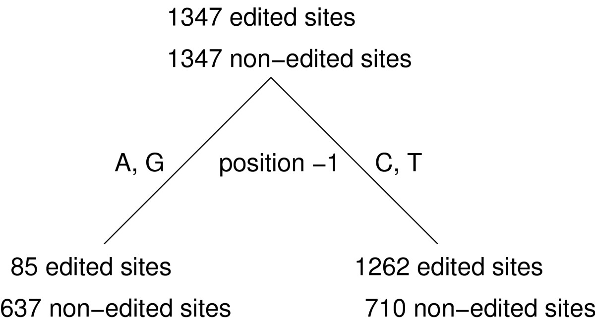 https://static-content.springer.com/image/art%3A10.1186%2F1471-2105-5-132/MediaObjects/12859_2004_Article_248_Fig1_HTML.jpg