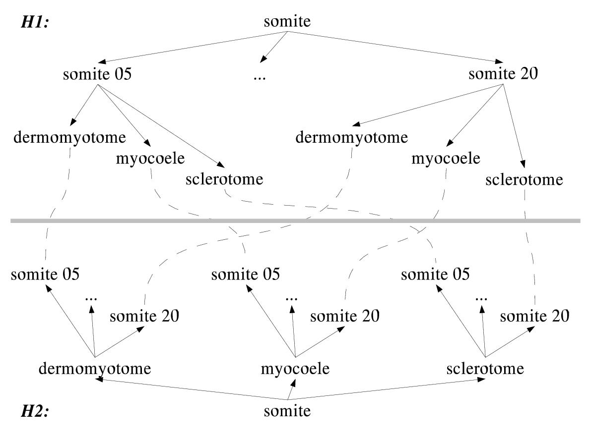https://static-content.springer.com/image/art%3A10.1186%2F1471-2105-5-184/MediaObjects/12859_2003_Article_300_Fig3_HTML.jpg