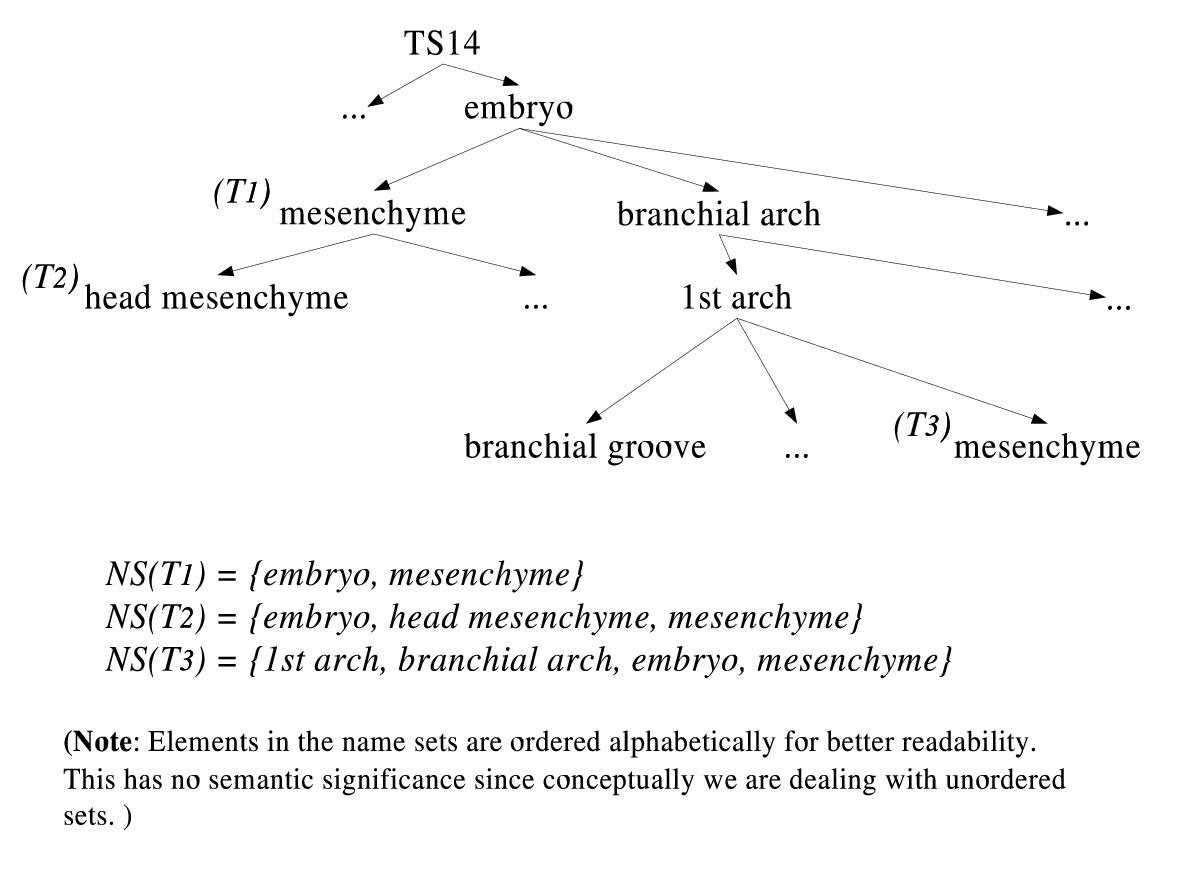 https://static-content.springer.com/image/art%3A10.1186%2F1471-2105-5-184/MediaObjects/12859_2003_Article_300_Fig4_HTML.jpg