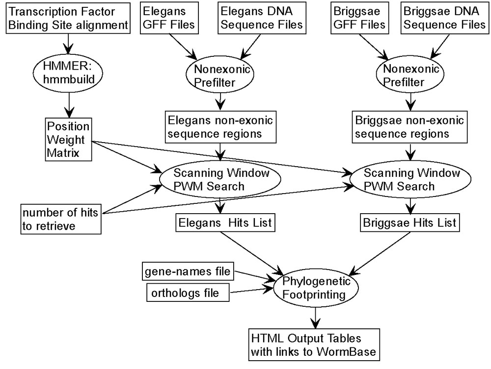 https://static-content.springer.com/image/art%3A10.1186%2F1471-2105-5-27/MediaObjects/12859_2004_Article_143_Fig1_HTML.jpg