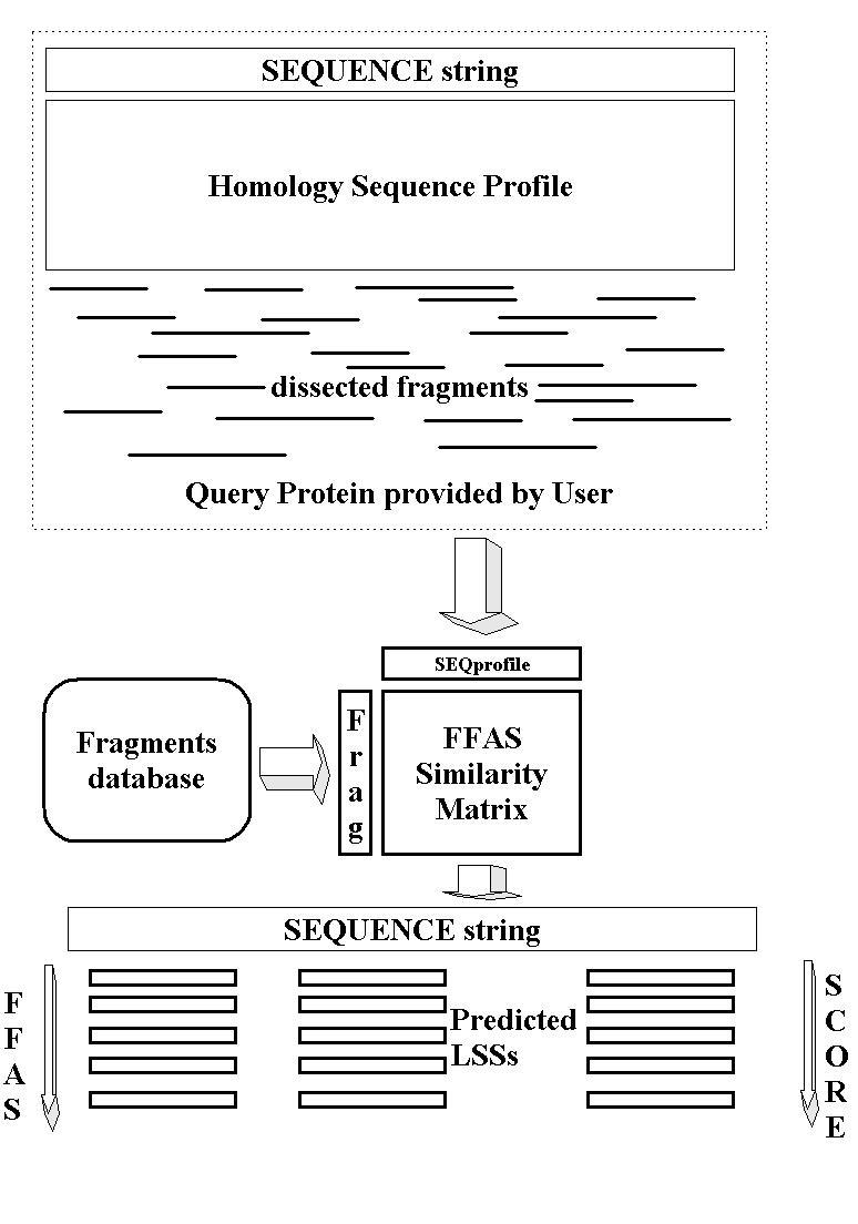 https://static-content.springer.com/image/art%3A10.1186%2F1471-2105-5-98/MediaObjects/12859_2004_Article_214_Fig1_HTML.jpg
