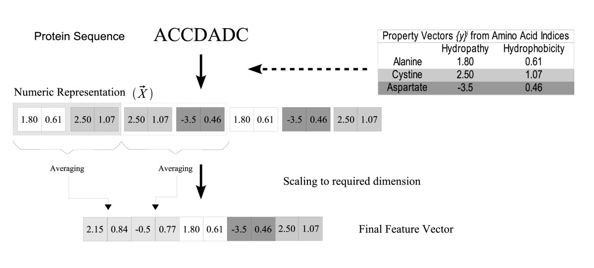 https://static-content.springer.com/image/art%3A10.1186%2F1471-2105-6-152/MediaObjects/12859_2004_Article_477_Fig3_HTML.jpg