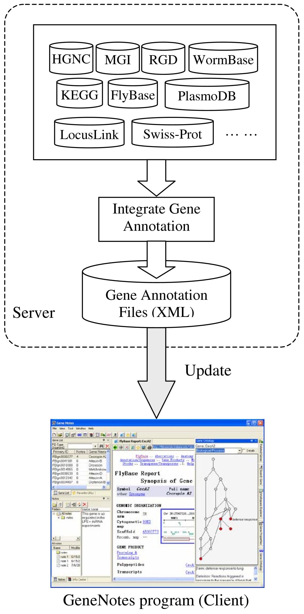 https://static-content.springer.com/image/art%3A10.1186%2F1471-2105-6-20/MediaObjects/12859_2004_Article_345_Fig1_HTML.jpg