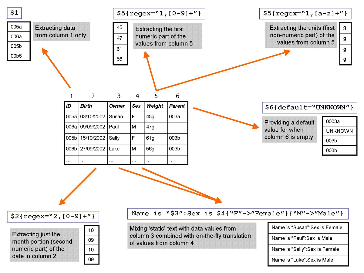 https://static-content.springer.com/image/art%3A10.1186%2F1471-2105-6-264/MediaObjects/12859_2005_Article_589_Fig2_HTML.jpg