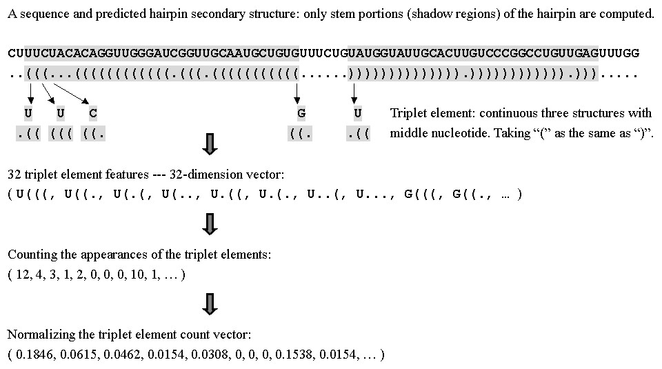 https://static-content.springer.com/image/art%3A10.1186%2F1471-2105-6-310/MediaObjects/12859_2005_Article_634_Fig1_HTML.jpg