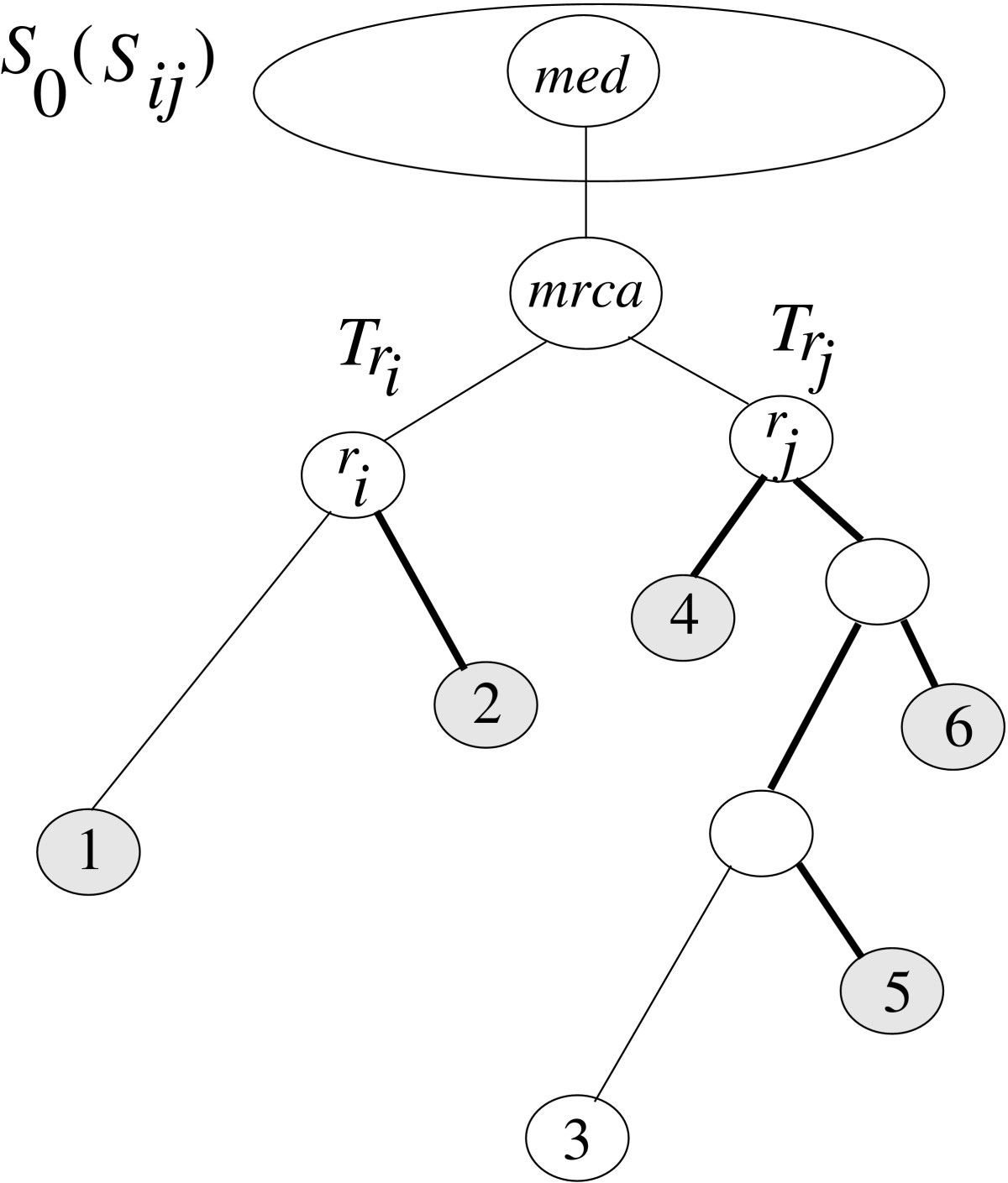 https://static-content.springer.com/image/art%3A10.1186%2F1471-2105-6-92/MediaObjects/12859_2004_Article_417_Fig7_HTML.jpg