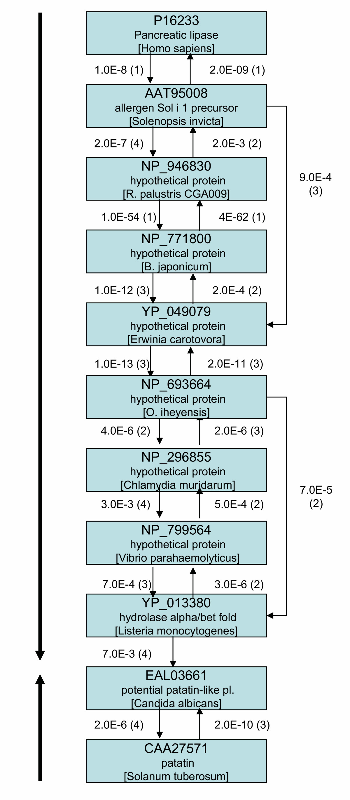 https://static-content.springer.com/image/art%3A10.1186%2F1471-2105-7-164/MediaObjects/12859_2005_Article_903_Fig1_HTML.jpg