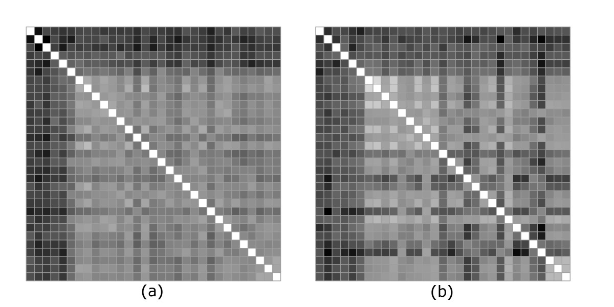 https://static-content.springer.com/image/art%3A10.1186%2F1471-2105-7-242/MediaObjects/12859_2005_Article_981_Fig7_HTML.jpg