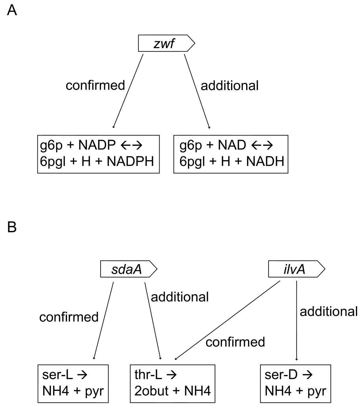 https://static-content.springer.com/image/art%3A10.1186%2F1471-2105-7-296/MediaObjects/12859_2006_Article_1035_Fig3_HTML.jpg