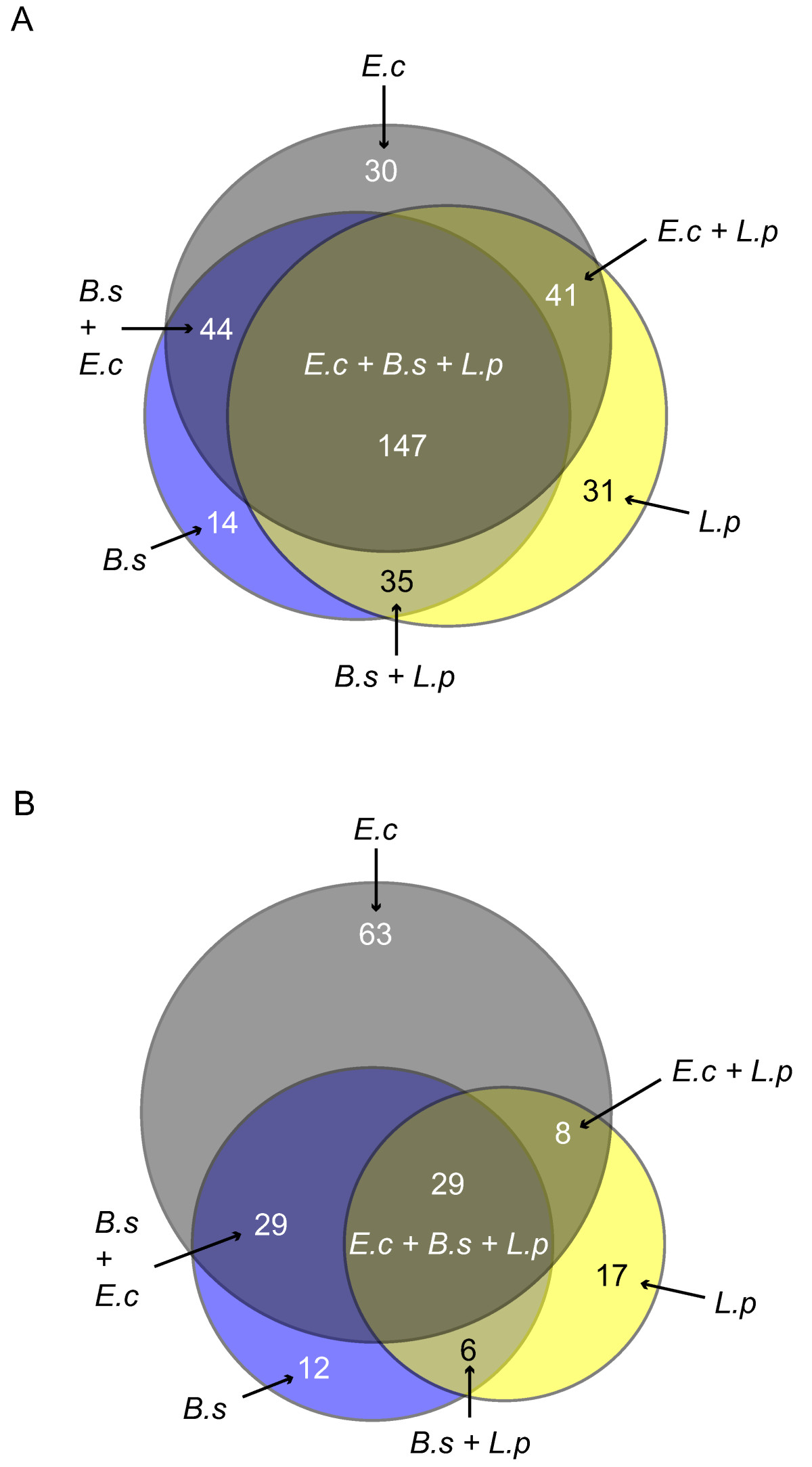 https://static-content.springer.com/image/art%3A10.1186%2F1471-2105-7-296/MediaObjects/12859_2006_Article_1035_Fig4_HTML.jpg