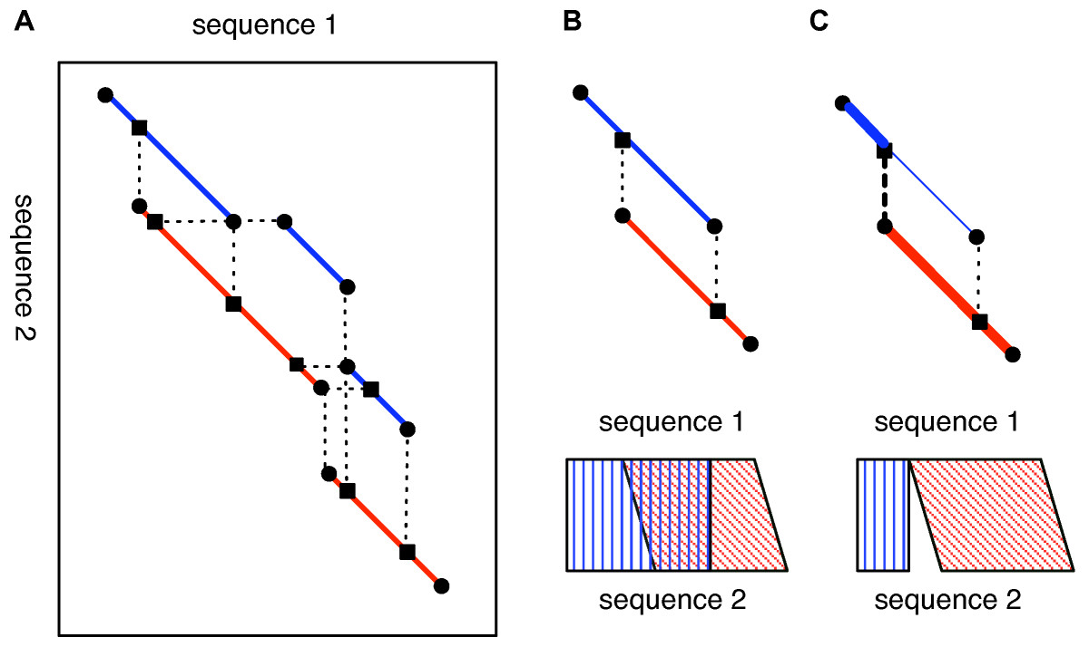 https://static-content.springer.com/image/art%3A10.1186%2F1471-2105-7-472/MediaObjects/12859_2006_Article_1211_Fig2_HTML.jpg