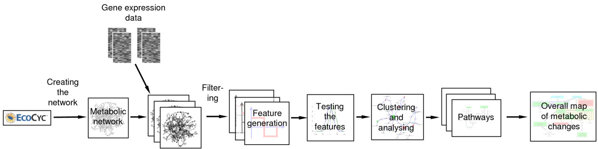 https://static-content.springer.com/image/art%3A10.1186%2F1471-2105-8-149/MediaObjects/12859_2006_Article_1521_Fig2_HTML.jpg